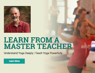 Viniyoga Teacher/Therapist Training